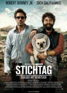 Stichtag (2010)<br><small><i>Due Date</i></small>