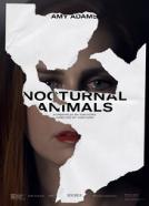 <b>Tom Ford</b><br>Nocturnal Animals (2016)<br><small><i>Nocturnal Animals</i></small>