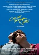 <b>The Mystery of Love</b><br>Call Me By Your Name (2017)<br><small><i>Call Me by Your Name</i></small>